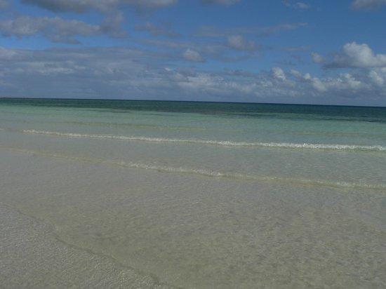 Island Seas Resort: Beautiful beach