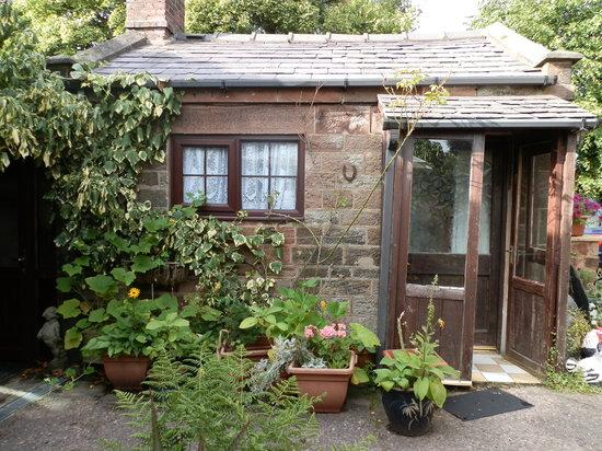 Prospect House: courtyard