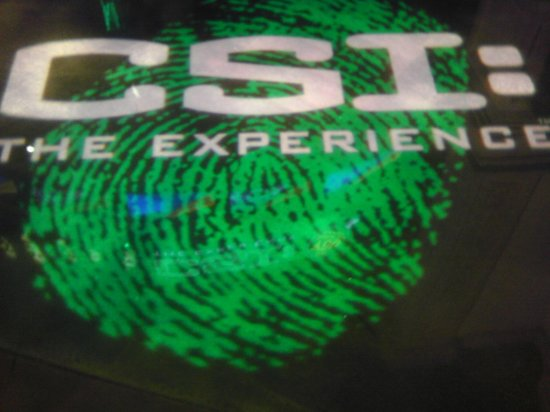 CSI: The Experience: In the entrance of the experience