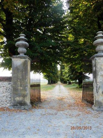 Villa Barbaro: Il viale di fronte alla villa