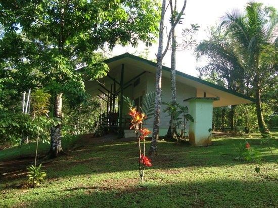 Laguna del Lagarto Lodge: Habitaciones