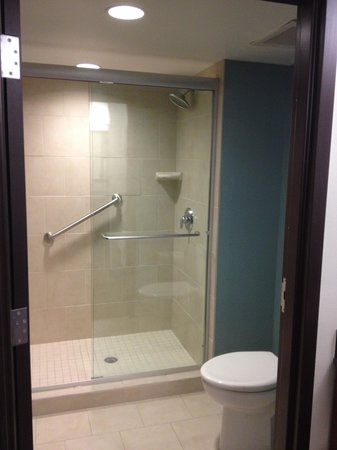 Hyatt Place Fort Myers at The Forum: Bathroom