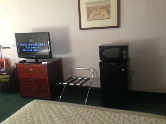 Meadowlands Plaza Hotel-Secaucus : Twin room