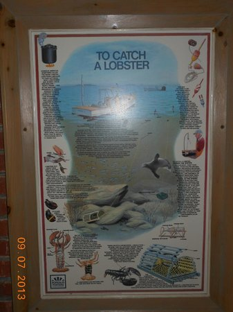 Pilgrim Sands on Long Beach: How to catch a Lobster Poster in Lobby Area!