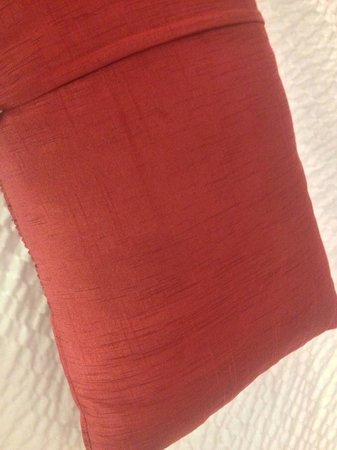 Courtyard San Diego Rancho Bernardo : Dirty and stained decorative pillow
