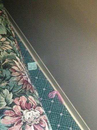 Grand Islander Hotel: Used Condom in room