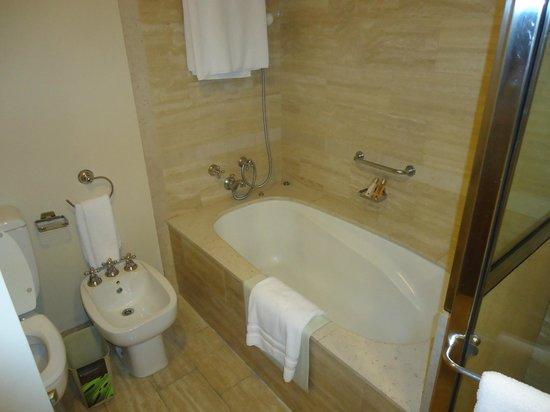 InterContinental Hotel Buenos Aires: banheiro