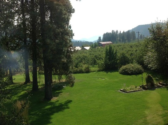Camille's Haus: Part of Camille's yard and view of the orchards and mountains beyond.