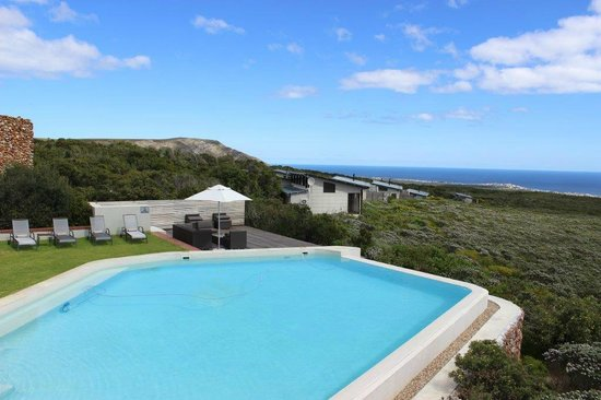 Grootbos Private Nature Reserve: Swimming pool with a view