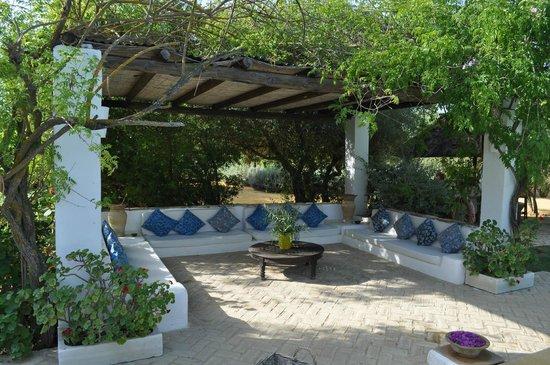 Hacienda de San Rafael: by the pool