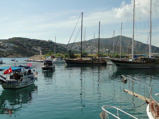 Kelebek Hotel : Short steep walk down to beautiful Kalkan harbour.