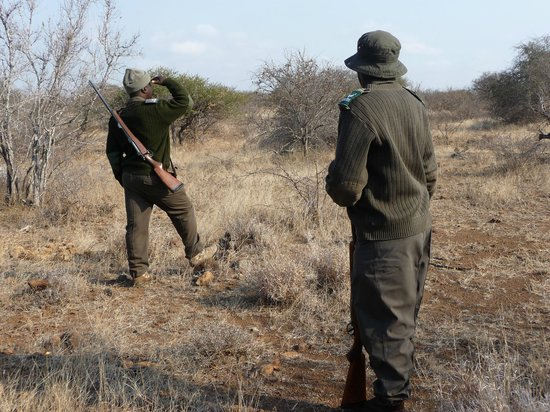 Olifants Rest Camp : Mooring walk with ranger