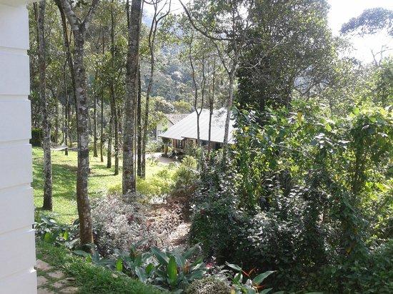 Niraamaya Retreats Cardamom Club - Thekkady: View