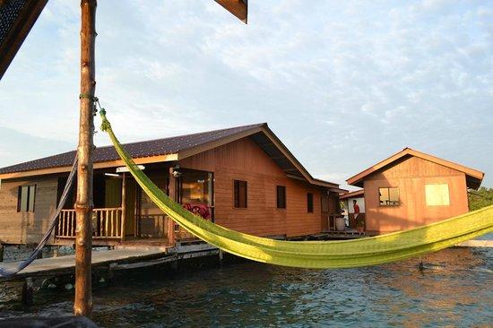 Monkey Dives Lodge, Borneo: -