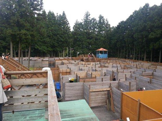 Big Maze Palladium