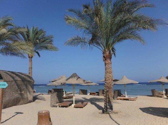 Flamenco Beach and Resort: spiaggia hotel