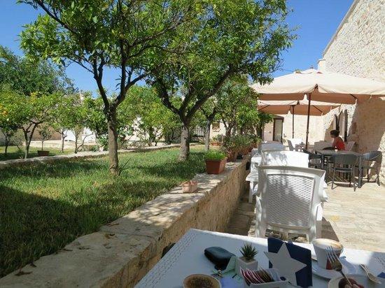 Agriturismo Masseria Valente: breakfast - garden terrace