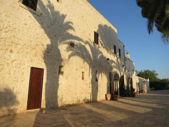 Agriturismo Masseria Valente: palm trees