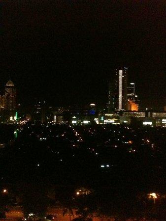 Shangri-La Hotel Jakarta: City view