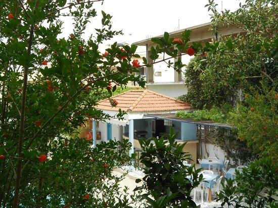 Ntanelis Hotel: вид из номера 209