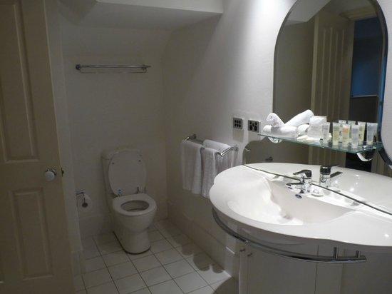 Falls Mountain Retreat Blue Mountains : bathroom room 17