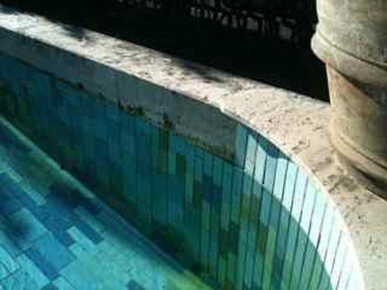 Grand Hotel Panoramic: grimy swimming pool