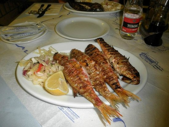 Taverna Stefanos: red mullet (barbounia)