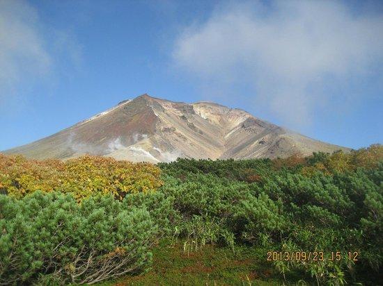 Asahidake Natural Hiking Route: ロープウェイ駅近くからの旭岳