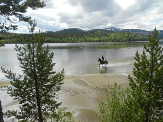 Savalen hestesenter: Bading i Savalen