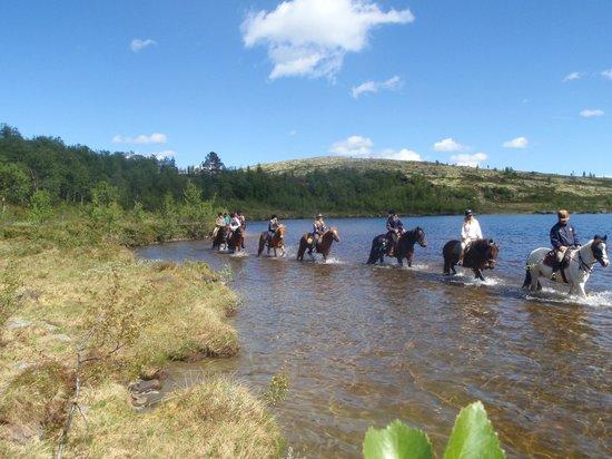 Savalen hestesenter: Her krysser vi et lite tjern
