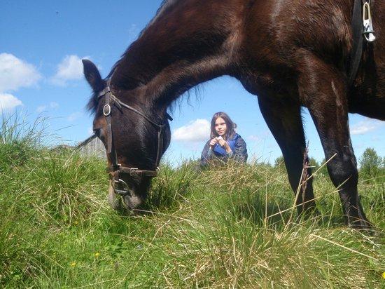 Savalen hestesenter: Pause for å gresse og spise niste