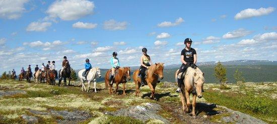 Savalen hestesenter: Storslagen utsikt fra toppen av fjellet bak hestesenteret