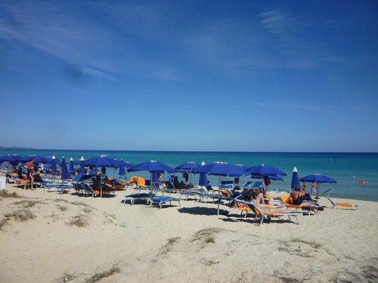 Garden Beach Hotel & Resort : piaggia bellissima e ricca di gigli