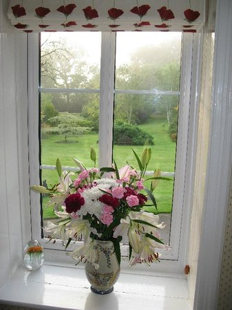 Hartwood House: Through the landing window