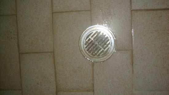 Giakalis Aparthotel : 2 ter Abfluss im Bad...ebenfalls 14 tage nicht gereinigt