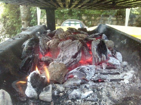 Penzion Slovenija Avto: Barbeque preparation