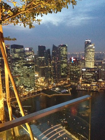 Mbs Skypark View By Night
