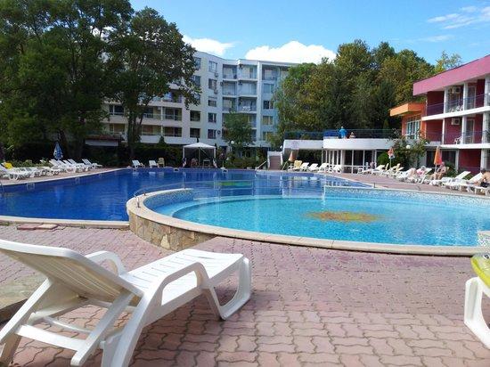 Regina Hotel Sunny Beach : Pool area