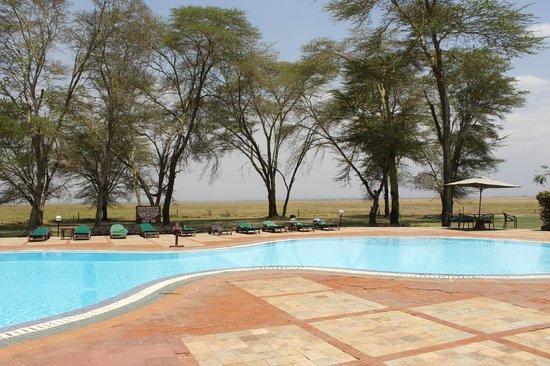 Ol Tukai Lodge: piscina con vista