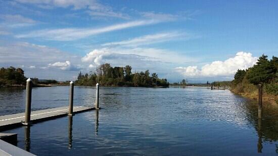 Spencer Island Park Everett Wa