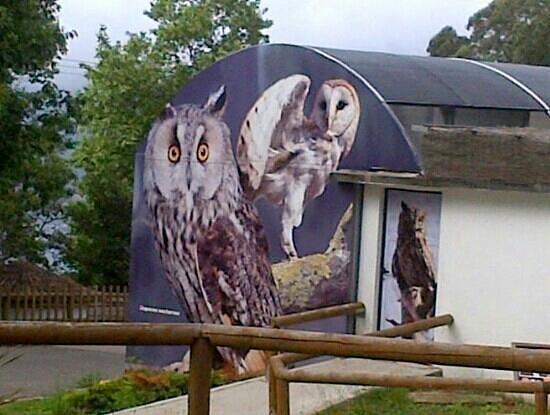 Zoológico de Vigo: el zoo