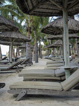 ลักซ์ เบลเล มาเร: beach
