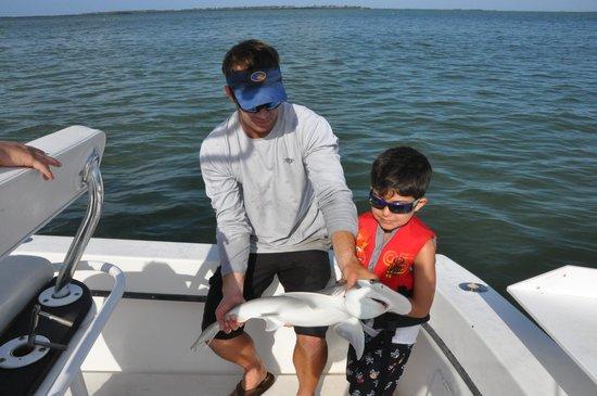 Bottlenose shark picture of fisheye sportfishing for Clearwater beach fishing charters