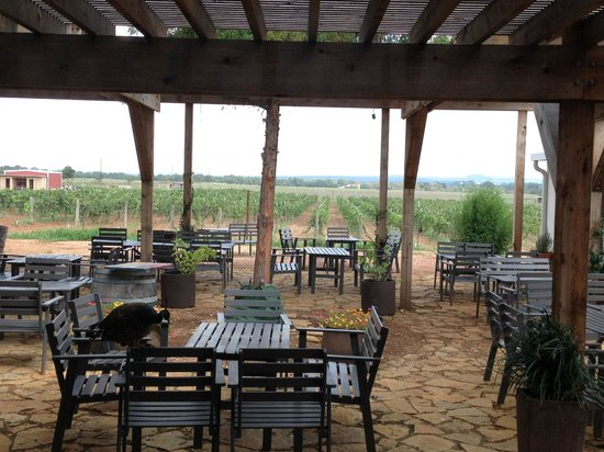 Hilmy Cellars: The Patio and Vineyard