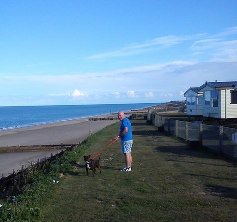 Castaways Holiday Park: fantastic seafront walks for your dog