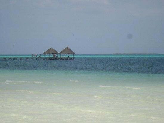 Iberostar Cayo Coco: Lindíssima praia de Cayo Guillermo