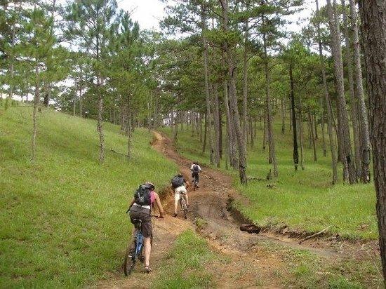 Mountain Biking with Green Horizon Tours