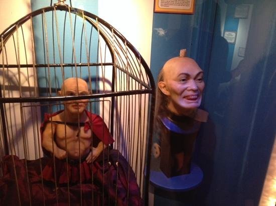 Ripley's Believe It Or Not! Blackpool: haha