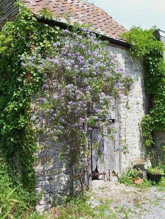 Nut Tree Farm: The Granerie