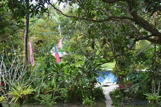 Swasti Eco Cottages : Vue de la chambre